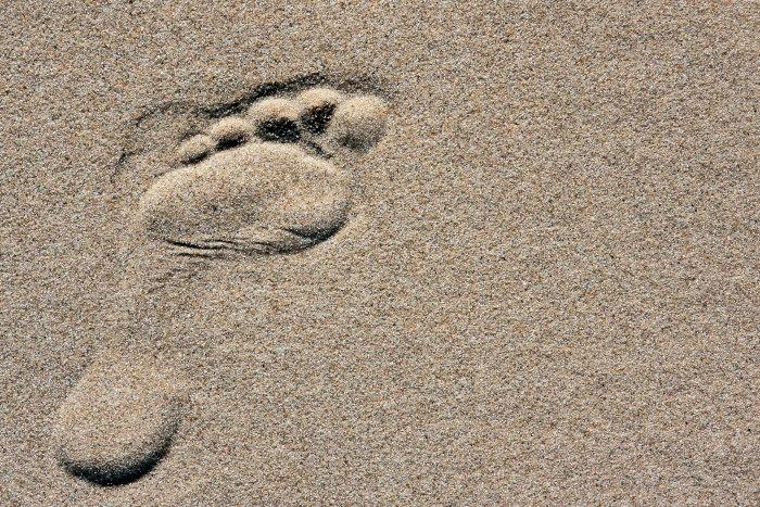 Achtsamkeit/Mindfulness: Weg und Weise zu sein….